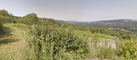 Les coteaux de Dornot - Image Google Street Map