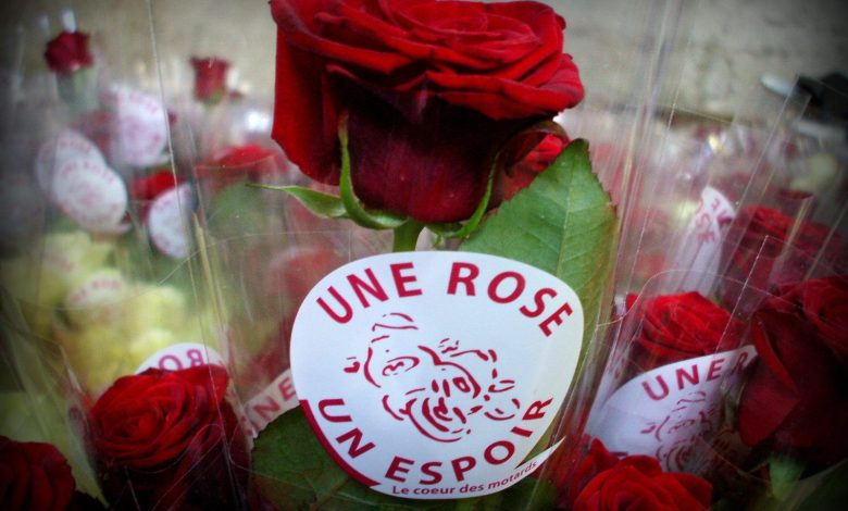 Photo of Une Rose un Espoir en Moselle : 2€ euros pour combattre le cancer