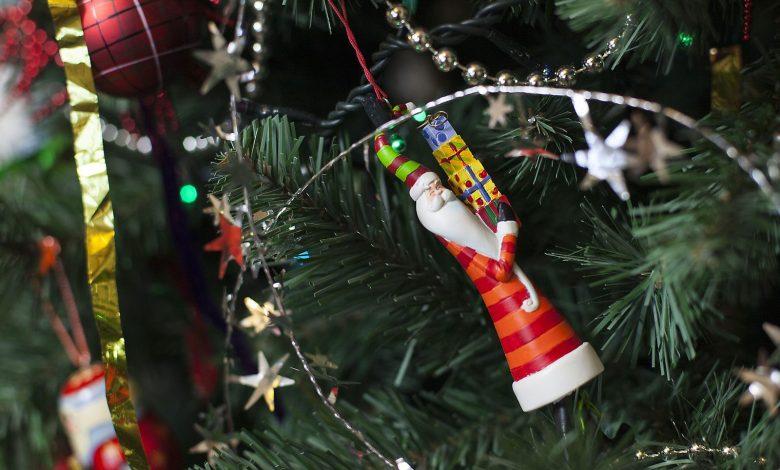 Photo of Metz Métropole : que faire de son sapin de Noël après les fêtes ?