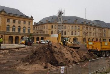 Metz : les plantes et arbres du jardin éphémère sont à vendre