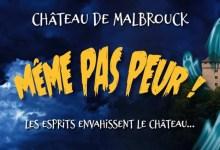Photo of Week-end «Bêtes et Sorcières» au Château de Malbrouck : même pas peur