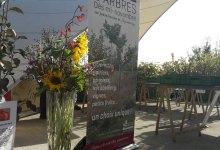 Photo of Jardins de Laquenexy : grande vente d'arbres fruitiers