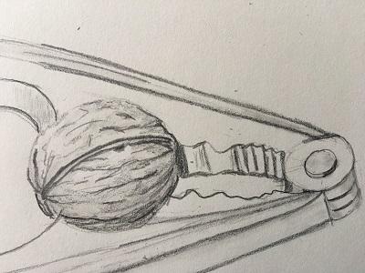 Comment dessiner une noix réaliste facilement