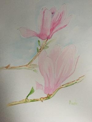 Comment peindre facilement  une fleur de magnolia à l'aquarelle.