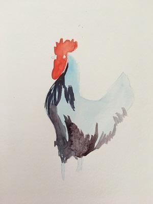 Les plumes du coq