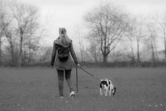 Pourquoi balader son chien dehors malgré le grand jardin à la maison ?