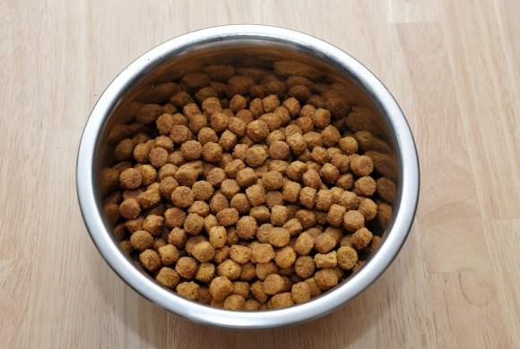 Les aliments pour chiens et chats non testés sur les animaux