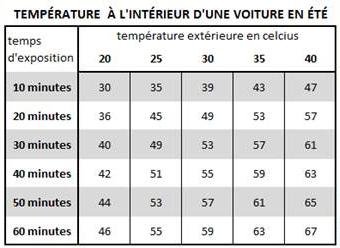 temperature_auto