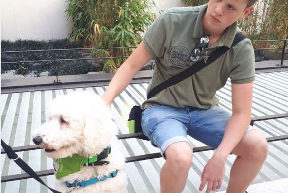 Des chiens renifleurs pour les diabétiques