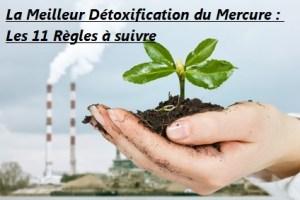 La Meilleur Détoxification du Mercure --- Les 11 Règles à suivre