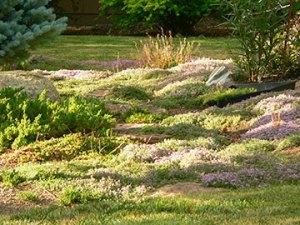garden design with small berms near a pathway