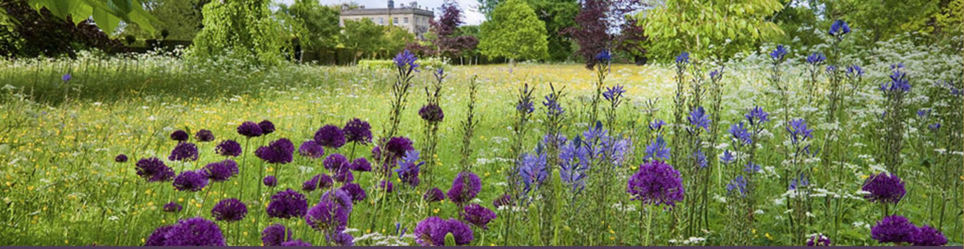 Highgrove Organic Gardens