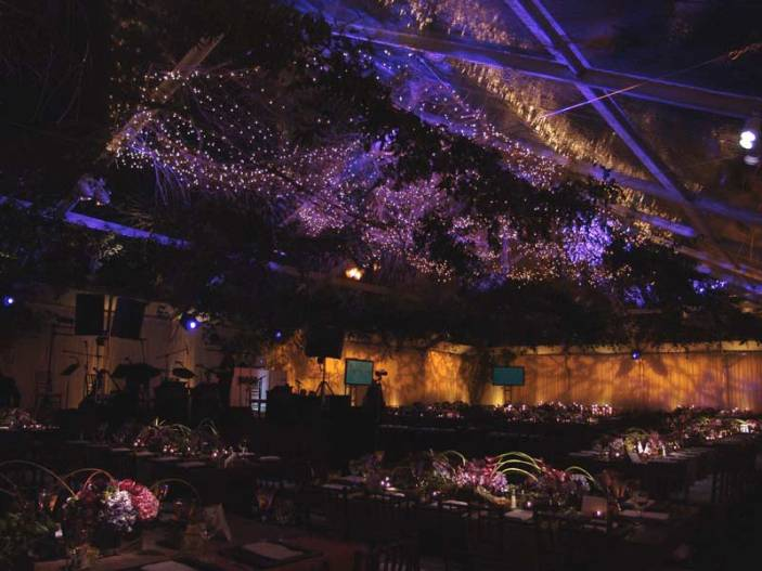Specialty-Lighting-Large-Events