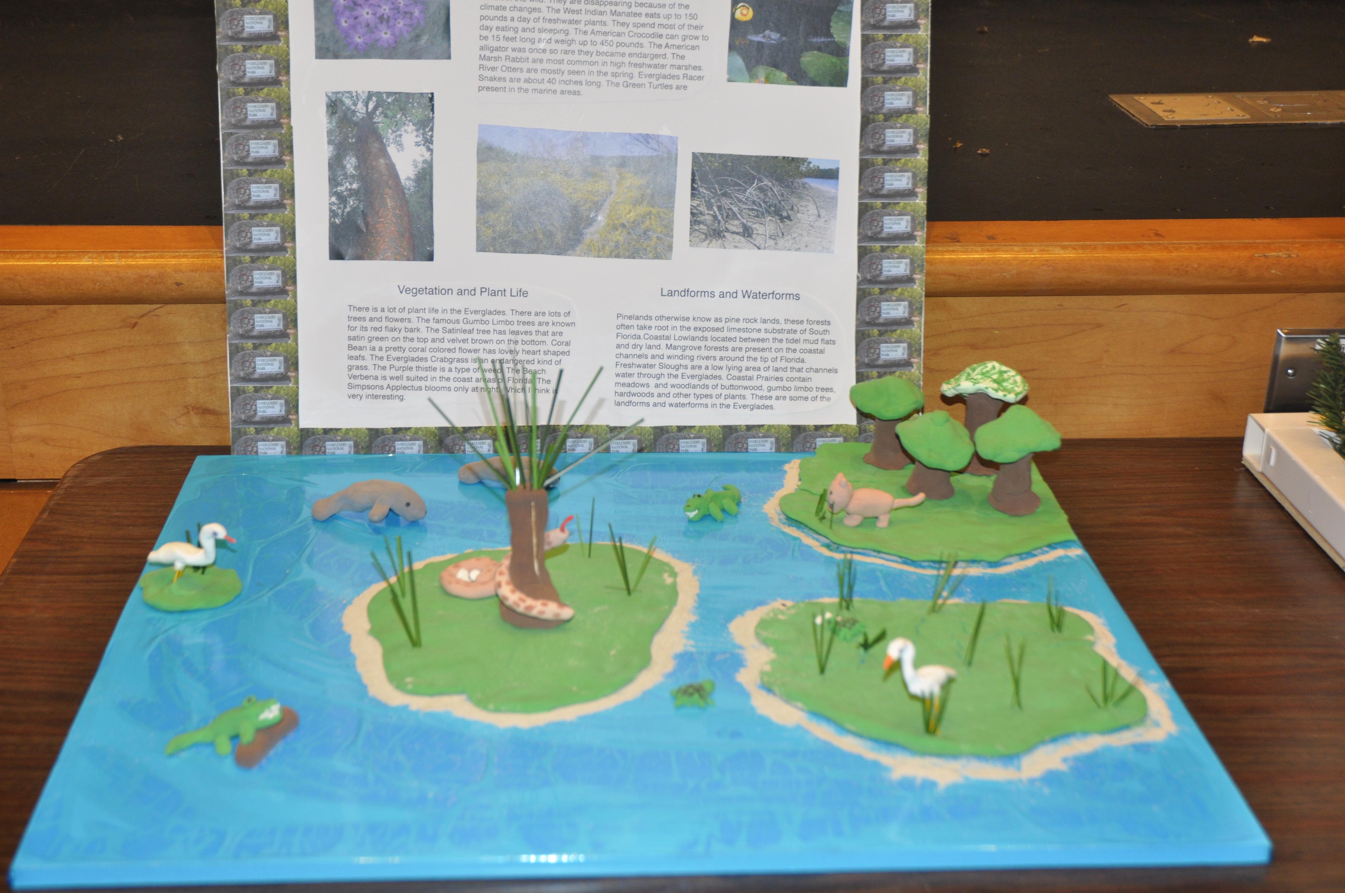 3rd Grade National Parks Presentation