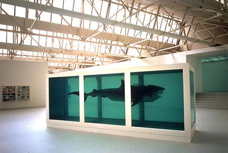 Hirst_shark