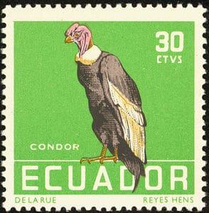 Stamp_Ecuador_1958_30c_Andean_Condor