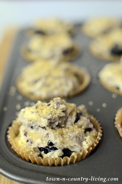 Blackberry Lemon Muffin Batter in Cups