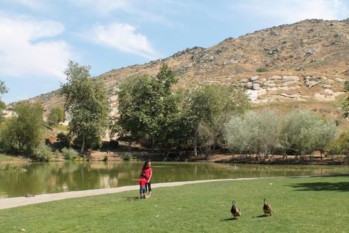 瑪莉薇格自然中心(Mary Vagle Nature Center) - 美國城鎮旅遊網