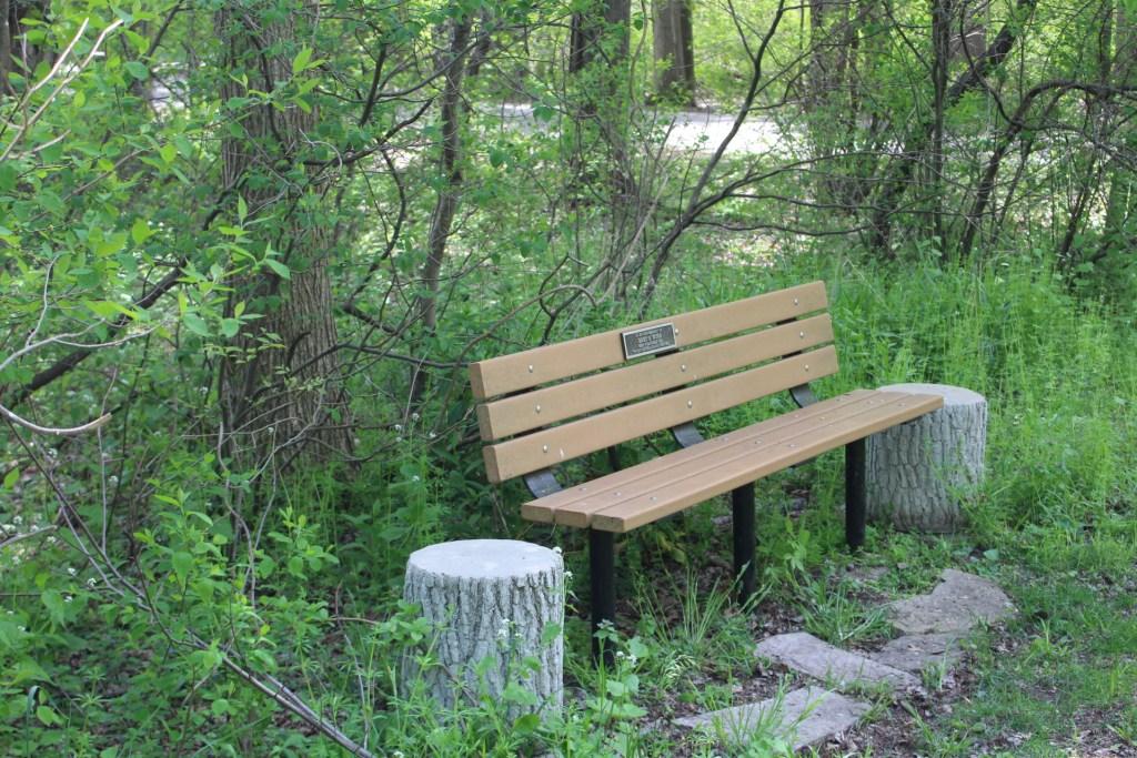 bench along white ditch trail