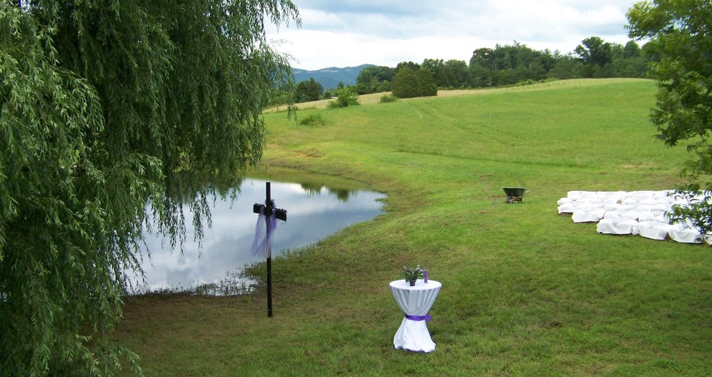 The Pond with the Weeping Willow Tree is a popular site for ceremonies