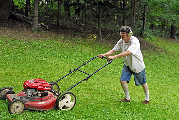 The Point Of The Summer Where Mowing The Lawn Becomes A Hassle And A Pain