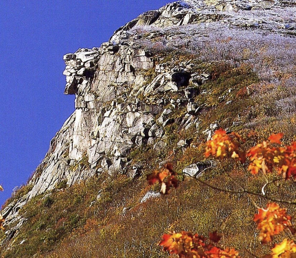 Bild von old man of the mountain profile plaza, franconia: Where Were You When You Heard The Old Man Of The Mountain Fell