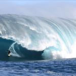 Chicken skin stories with big-wave surfer Dan Ryan
