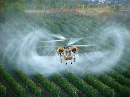 Glyphosate is killing us @ Toxicnow.com.jpg