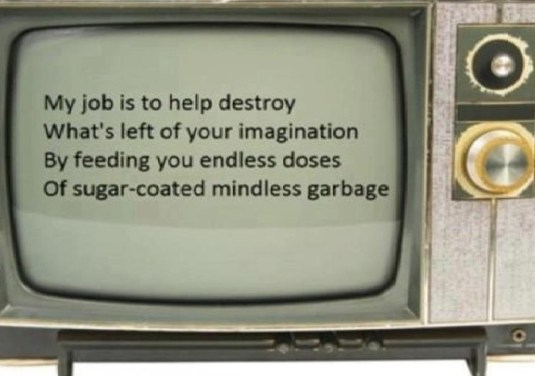 Kill your TV @ Toxicnow.com).jpg