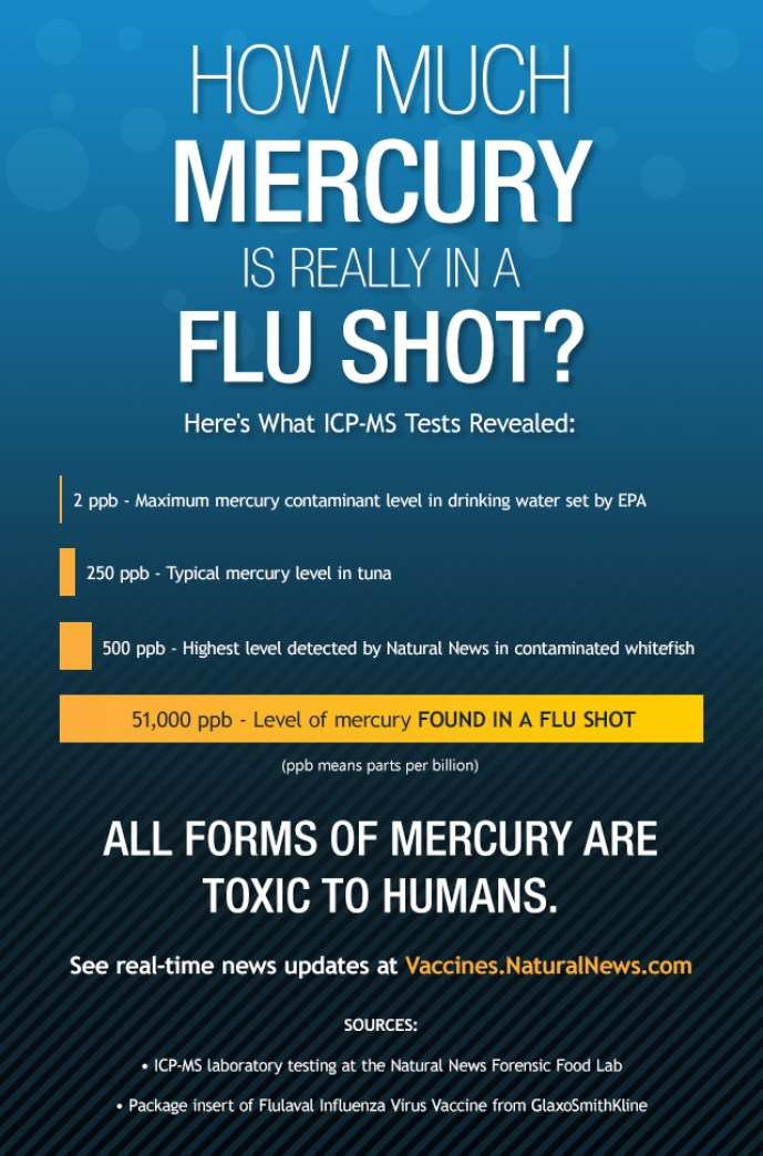 Mercury Flushot Causes Deaths @ ToxicNow.com.jpg