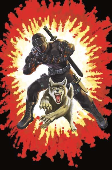 GI Joe Real American Hero #264 Silent Master Variant Cover A Wednesday