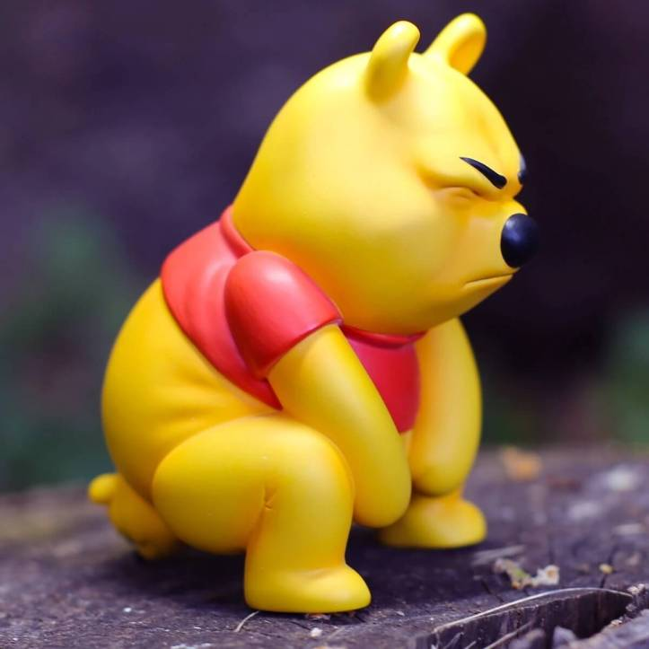 Pooh-Pooh-by-Alex-Solis-Winnie-the-poo-The-toy-chronicle-figure-Dis.jpg