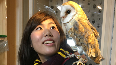 This is a shop where you can interact with live owls and take photos with them. The maximum capacity is eight people per hour. *Due to animal protections, some owls are only available for photographs. Flash photography and video are strictly prohibited本物のふくろう・みみずくを手や肩に乗せたり、一緒に撮影出来るお店。1時間の定員8人。 ※動物愛護の為、撮影のみのふくろうもいます。フラッシュ撮影、動画撮影は禁止です。