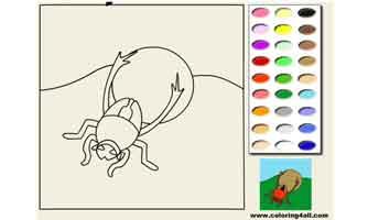 Жук : Раскраски для малышей