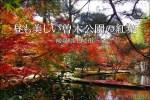 逆さ紅葉で有名な「曽木公園」は昼も美しい【岐阜県土岐市】