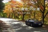 「タカドヤ湿地」の紅葉とオープンエアツーリング【豊田市 稲武】