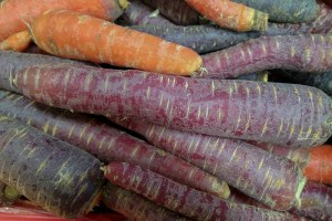 carrotsviolet orange vegetable hortaliza zanahorias carote ortaggio