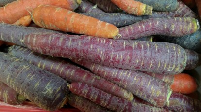 carrotsviolet orange vegetable hortaliza zanahorias carote ortaggio