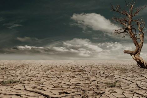 desert desierto deserto