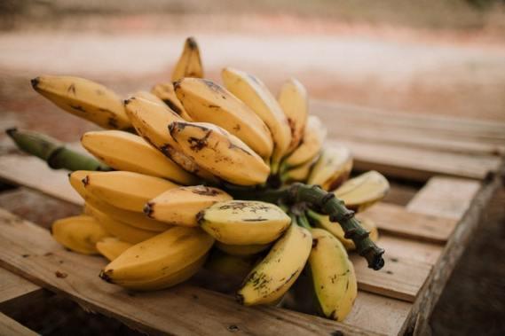 banana EL PLÁTANO RADIACTIVO