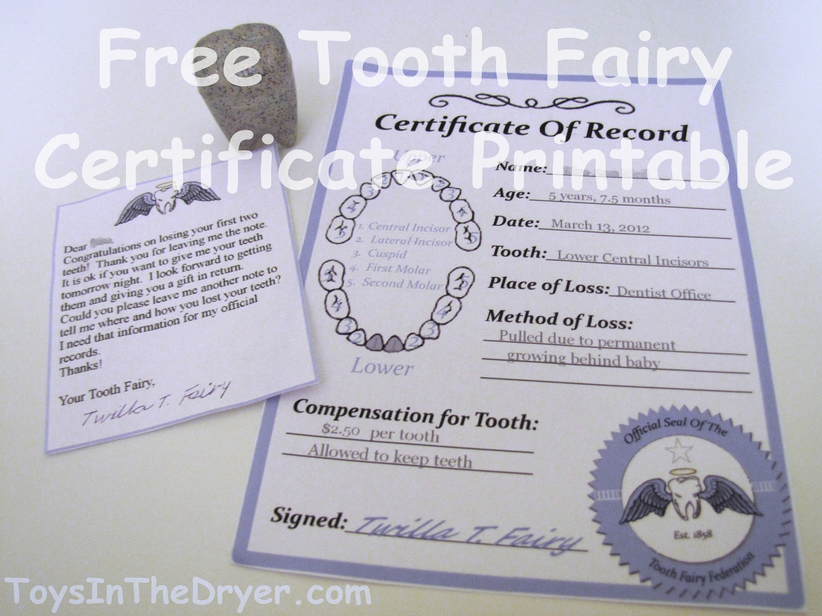 Free tooth fairy certificate tooth fairy certificate printable spiritdancerdesigns Choice Image