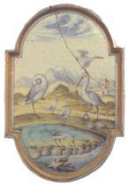 ONOCROTALUS