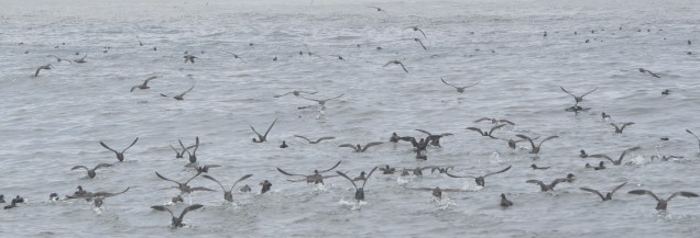 Group takeoff