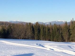 All kinds of winter wonder
