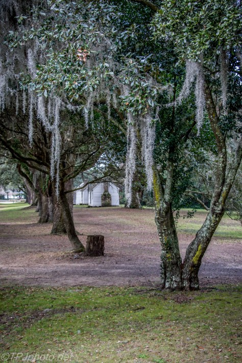 McLeod Plantation House - Click To Enlarge