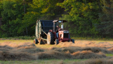 Baling Hay - Click To Enlarge