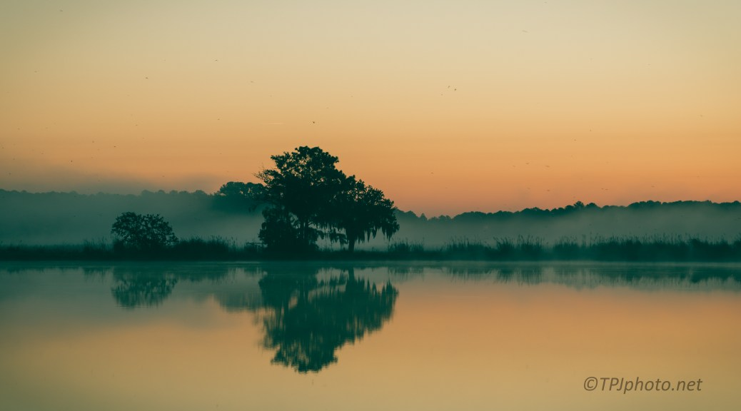 Dawn On A Marsh - click to enlarge