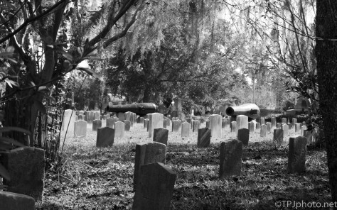Confederate States Of America Graves - click to enlarge
