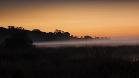 Sunrise Fog - click to enlarge