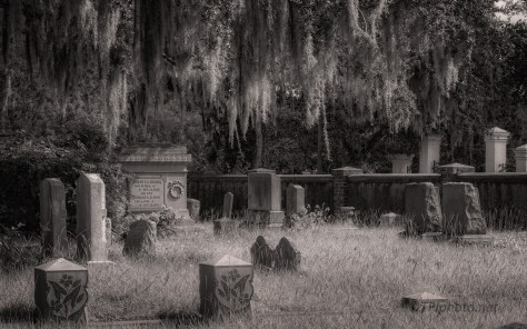 Walk Through An Old Southern Cemetery